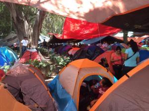 mexico camp